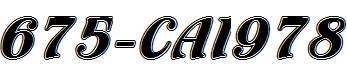 675-CAI978