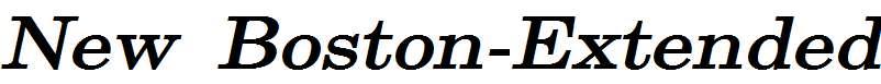 New-Boston-Extended-Bold-Italic