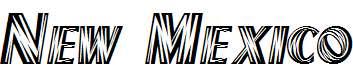 New-Mexico-Regular-copy-2-