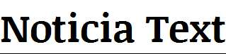 Noticia-Text-Bold