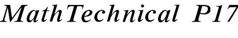 MathTechnicalP17