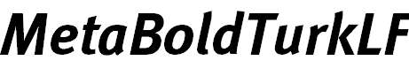 MetaBoldTurkLF-Italic