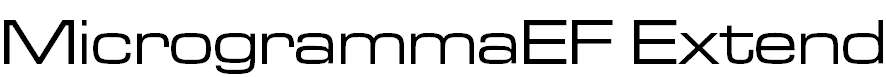 MicrogrammaEF-MediumExtend