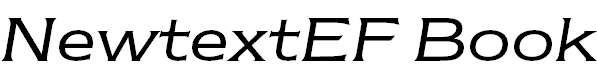 NewtextEF-BookItalic
