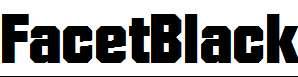 FacetBlack-Regular-copy-1-