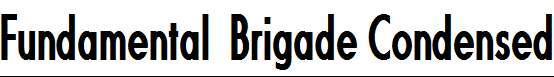 Fundamental-Brigade-Condensed