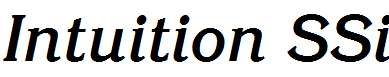 Intuition-SSi-Bold-Italic