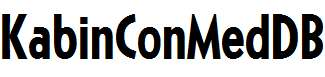 KabinConMedDB-Normal