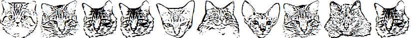 KittyPrint