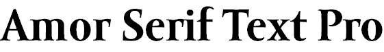 Amor-Serif-Text-Pro-Bold