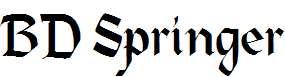 BD-Springer